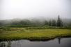 神仙沼-長沼