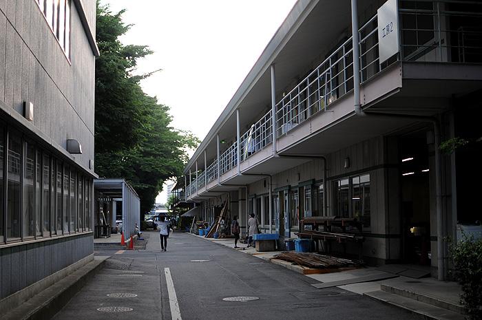 DSC_8392-2010.jpg