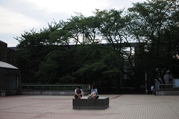 DSC_8413-2010.jpg